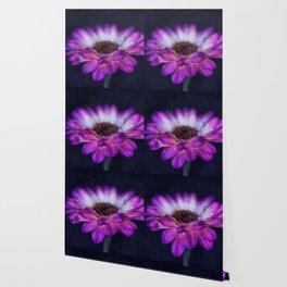 Purple Gerbera Daisy Closeup Wallpaper