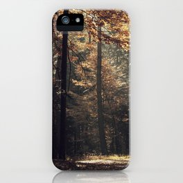 Autumn light and rays - horizontal iPhone Case