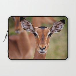 Impala in South Africa - wildlife Laptop Sleeve