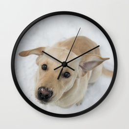 Labrador puppy in a snow Wall Clock