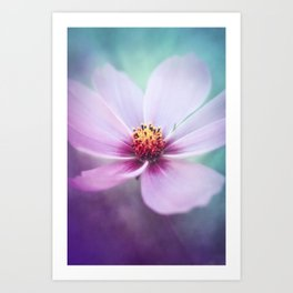 BEAUTY OF THE FOREST - PINK COSMEA FLOWER Art Print