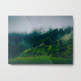 Moist Rainy Forest Pine Trees  Green Hills Metal Print