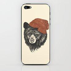 zissou the bear iPhone & iPod Skin