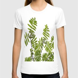 Green Rowan Leaves White Background #decor #society6 #buyart T-shirt