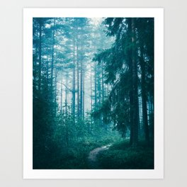 Peer Through The Trees Art Print