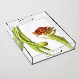 Bud & Bloom Acrylic Tray