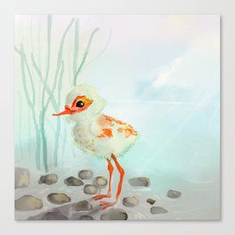 Cute Little Wading Bird in the Misty Sunset Canvas Print