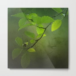 Forest Leaves Metal Print