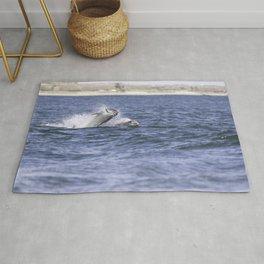 Dolphin having a salmon meal Rug