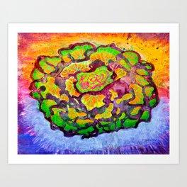 Cabbage Rose Art Print