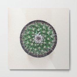 Minimal Cactus in the Round Metal Print