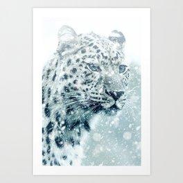 Snow Leopard Cheetah Winter Wild Animal Art Print