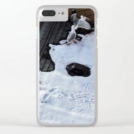 Brawling Gulls (2) Clear iPhone Case