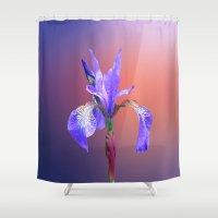 iris Shower Curtains featuring Iris by Lynn Bolt