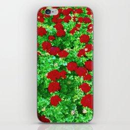 Geraniumz iPhone Skin