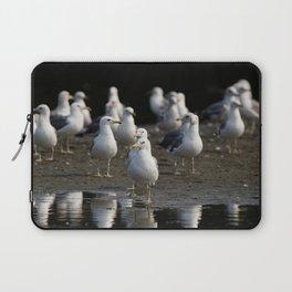 Gulls on the Beach | Birds | Beach Laptop Sleeve