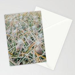 Maui Gold Pineapple Fields, Maui, Hawaii #4 Stationery Cards