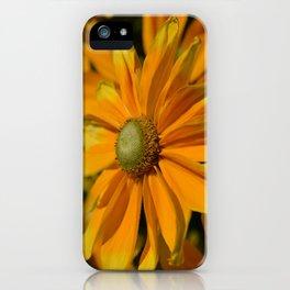 Sunshine in my Garden iPhone Case