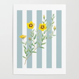 Yellow flowers on blue stripes Poster