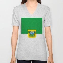 Flag of rio grande do norte Unisex V-Neck
