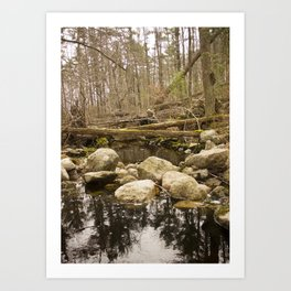 River Stream Water with Rocks Art Print