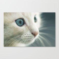 Blue eyes Details Canvas Print