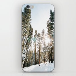 Snowy Forest iPhone Skin