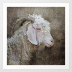 The beautiful goat Art Print