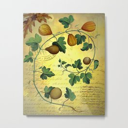 Vintage Botanical Collage, Autumn Pumpkins Metal Print