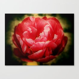 Breath Of Life - Leben Atmet Canvas Print