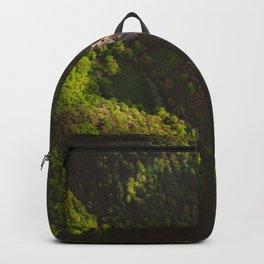 Hidden world Backpack