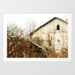 Dead country side. Art Print