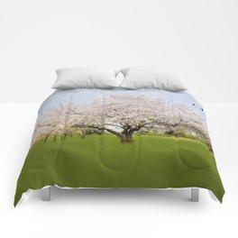 Spring Meadows Comforters