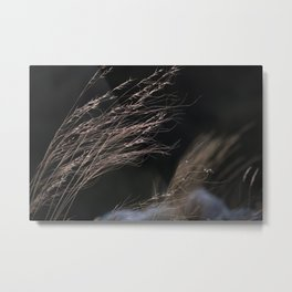 Windy mountains.Last light of the day. Metal Print