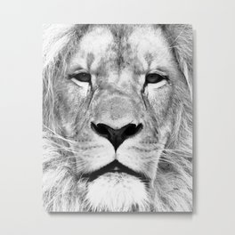 Lion, Animal, Scandinavian, Minimal, Trendy decor, Interior, Wall art Art Metal Print