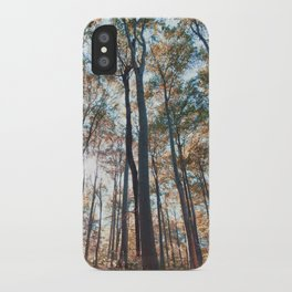 into the woods 06 iPhone Case