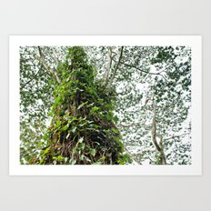 Leafy Leaves Art Print