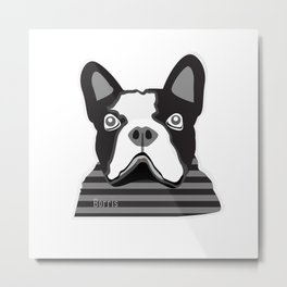 borris the french bulldog Metal Print