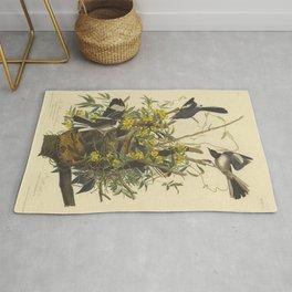 The MOCKING BIRD and RATTLESNAKE Audubon Rug