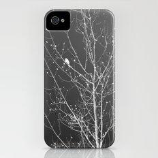 Modern Winter Slim Case iPhone (4, 4s)