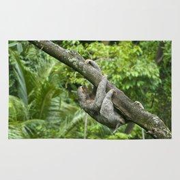 Three-toed sloth climbing tree Rug
