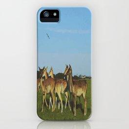 Oh Deer (Artistic/Alternative) iPhone Case