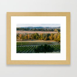 Vineyards Framed Art Print