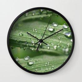 Fresh spring Wall Clock