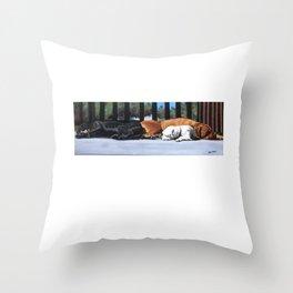 Sleeping Dogs Throw Pillow