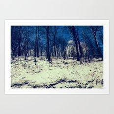 Snowy Woods Art Print