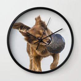 Brown dog playing with ball Wall Clock