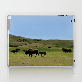 American Buffalo Walking on Prairie of North America Panorama Laptop & iPad Skin