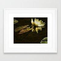 beth hoeckel Framed Art Prints featuring Lily Beth by gymmybob