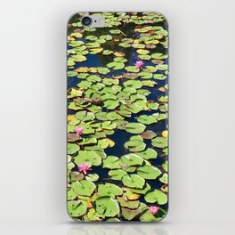 Water Lily Pond iPhone Skin